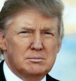 Donald Trump und die deutsche Elektroindustrie